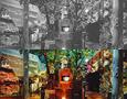 岐阜県高鷲村 Bookaの里 「木ぼっくりの森」 (1995)